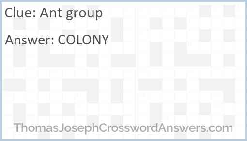 Ant group Answer