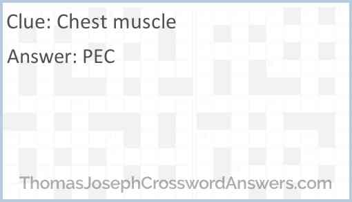 Chest muscle Answer