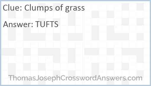 Clumps of grass Answer