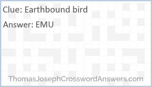 Earthbound bird Answer