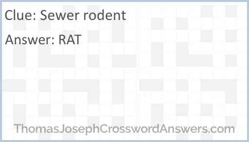 Sewer rodent Answer