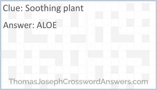Soothing plant Answer
