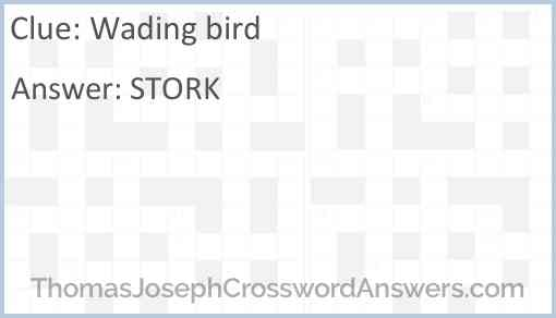 Wading bird Answer